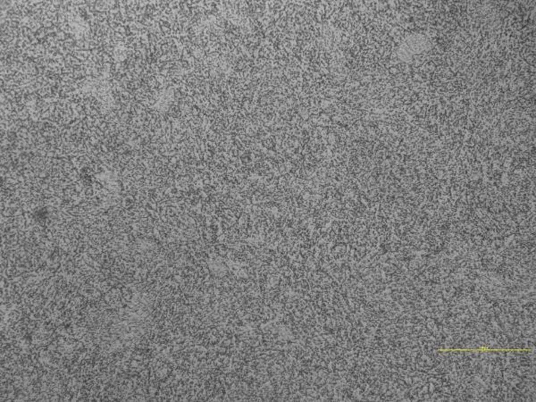 Ricottura di Distensione acciaio X38CrMoV5-1_500X (gentile concessione dell'azienda TTN SpA)
